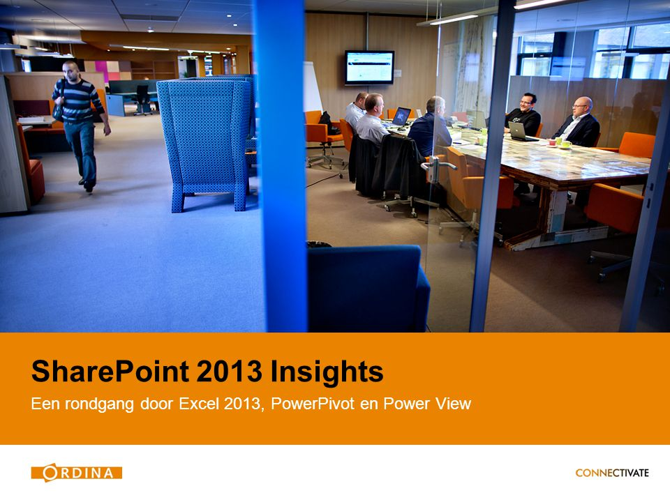 SharePoint 2013 Insights Een rondgang door Excel 2013, PowerPivot en Power View