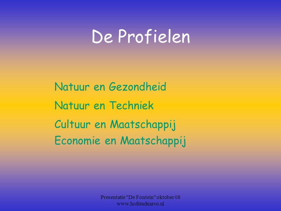 Vaardigheden: Zelfstandig werken SamenwerkenPresenterenPlannenOnderzoekenReflecteren Presentatie De Fontein oktober 08 www.hofstadmavo.nl