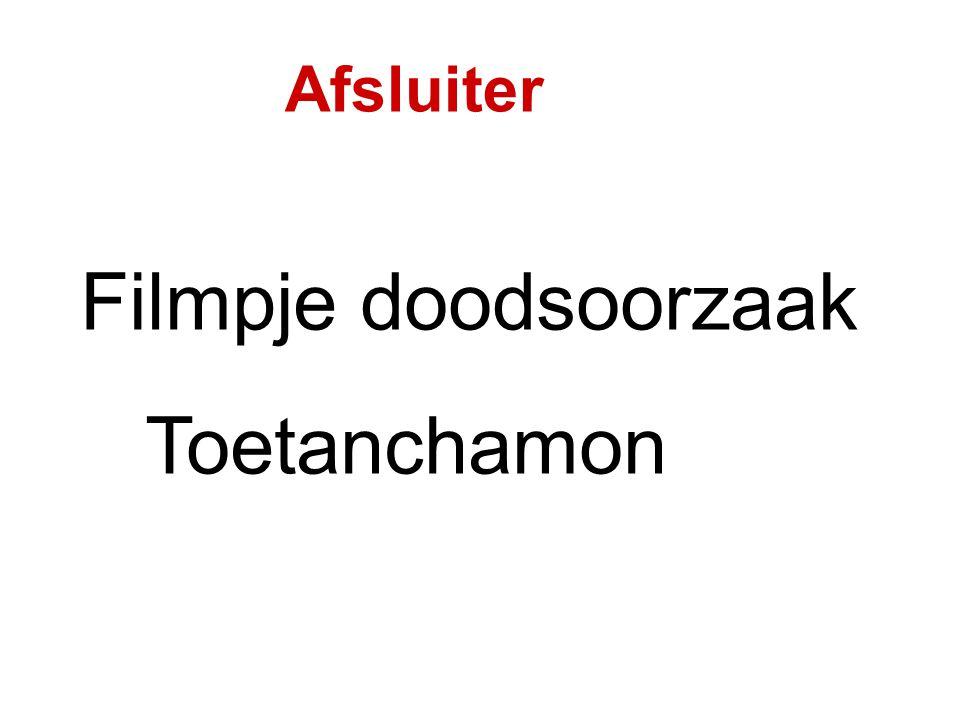 Afsluiter Filmpje doodsoorzaak Toetanchamon