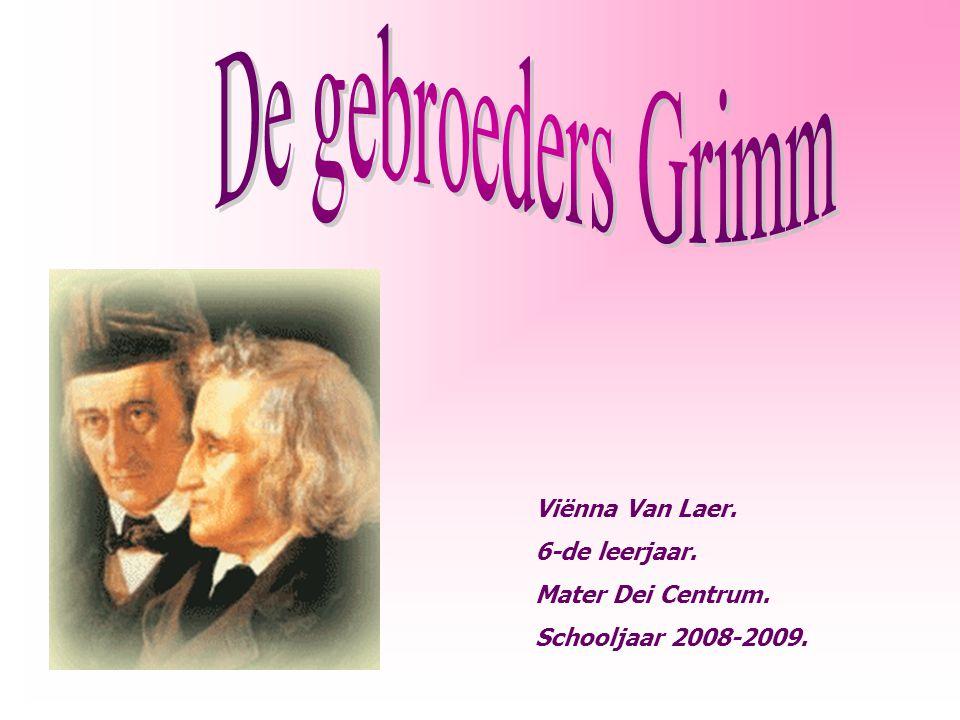 Viënna Van Laer. 6-de leerjaar. Mater Dei Centrum. Schooljaar 2008-2009.