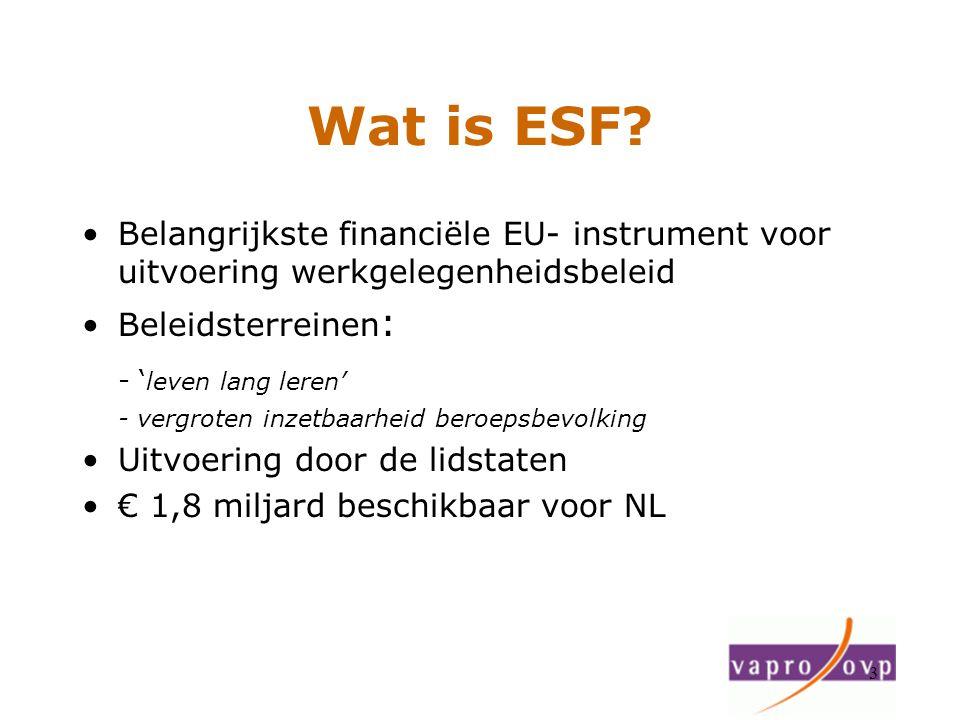 3 Wat is ESF? Belangrijkste financiële EU- instrument voor uitvoering werkgelegenheidsbeleid Beleidsterreinen : - ' leven lang leren' - vergroten inze