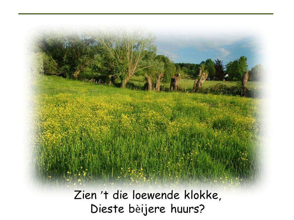 Heimwee naar Limburg Benny Neyman: ' t heimwee numste m è t