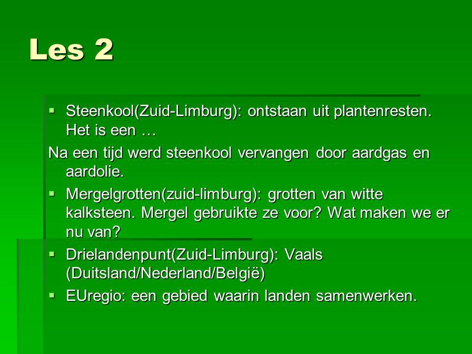 Les 2  Steenkool(Zuid-Limburg): ontstaan uit plantenresten.