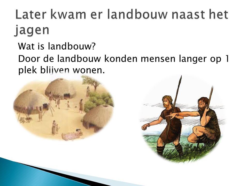 Wat is landbouw? Door de landbouw konden mensen langer op 1 plek blijven wonen.