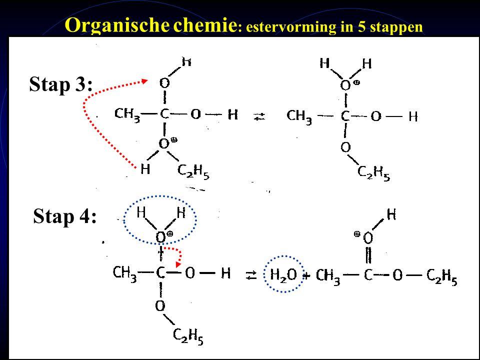 mlavd@BCEC37 Organische chemie : estervorming in 5 stappen Stap 3: Stap 4: