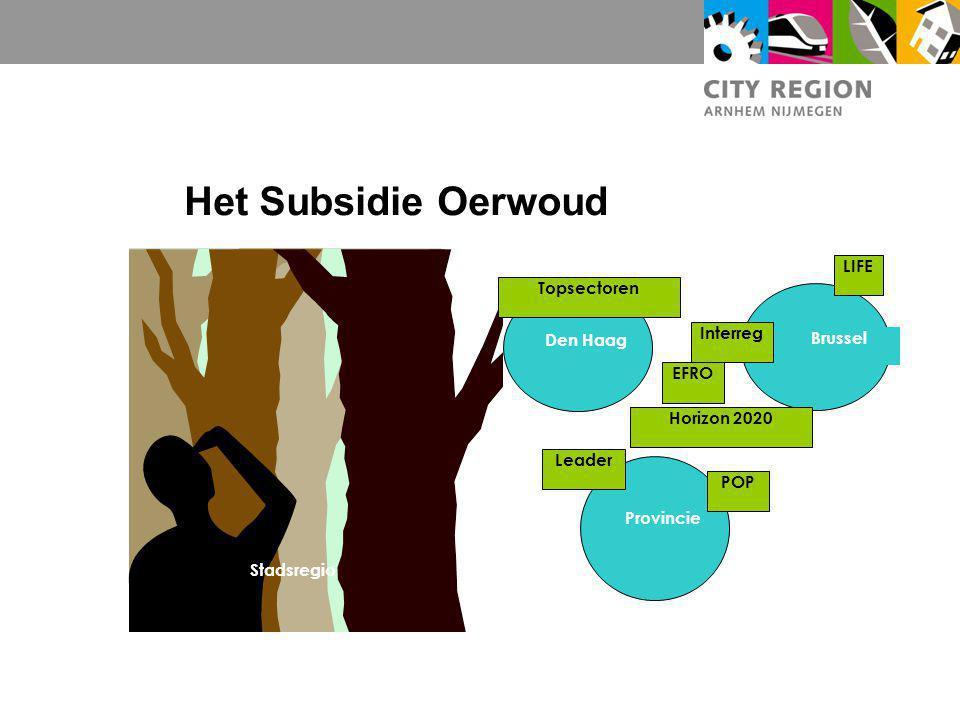 Het Subsidie Oerwoud Den Haag Brussel Provincie Stadsregio POP LIFE Leader Interreg Topsectoren Horizon 2020 EFRO