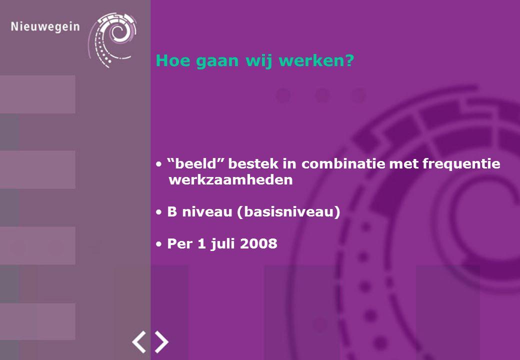 """Hoe gaan wij werken? """"beeld"""" bestek in combinatie met frequentie werkzaamheden B niveau (basisniveau) B niveau (basisniveau) Per 1 juli 2008"""