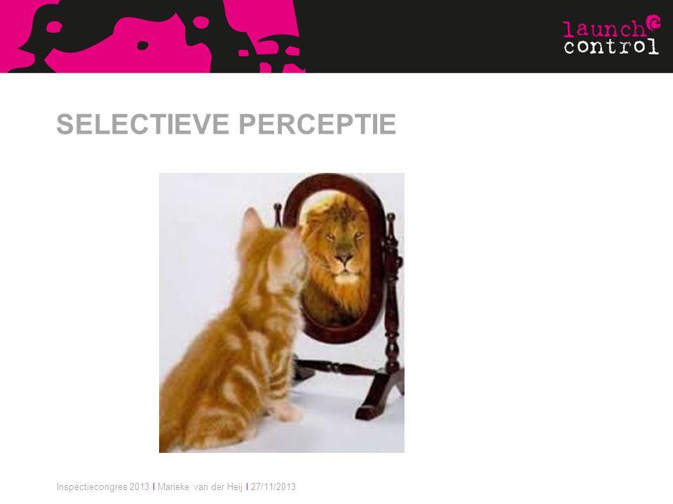 Inspectiecongres 2013 I Marieke van der Heij I 27/11/2013 SELECTIEVE PERCEPTIE