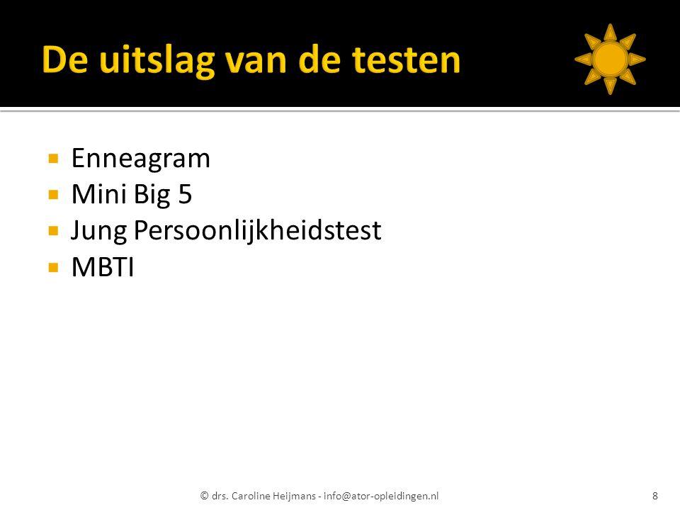  Enneagram  Mini Big 5  Jung Persoonlijkheidstest  MBTI © drs. Caroline Heijmans - info@ator-opleidingen.nl8
