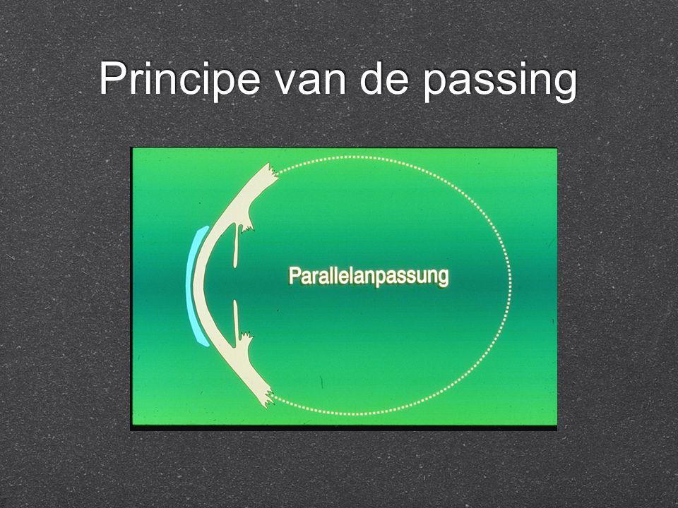 Principe van de passing