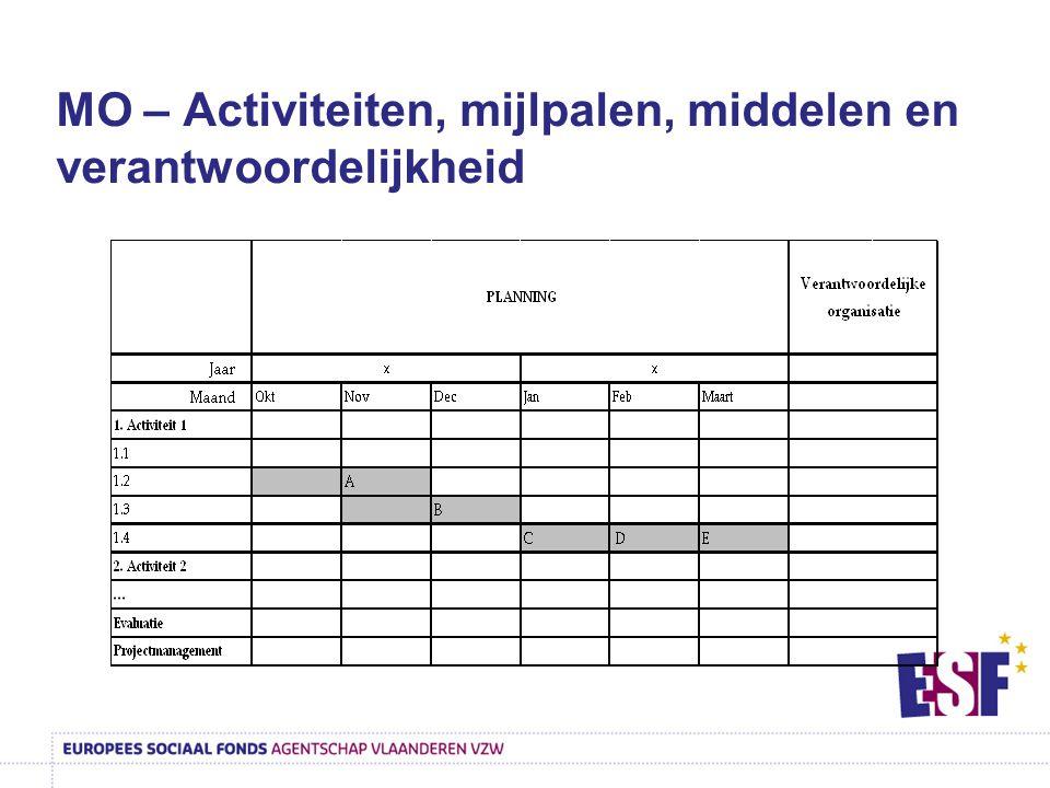 MO – Activiteiten, mijlpalen, middelen en verantwoordelijkheid