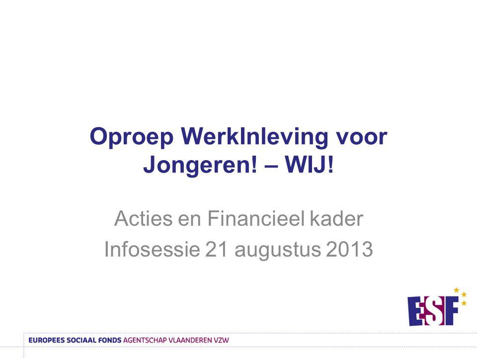 Oproep WerkInleving voor Jongeren! – WIJ! Acties en Financieel kader Infosessie 21 augustus 2013