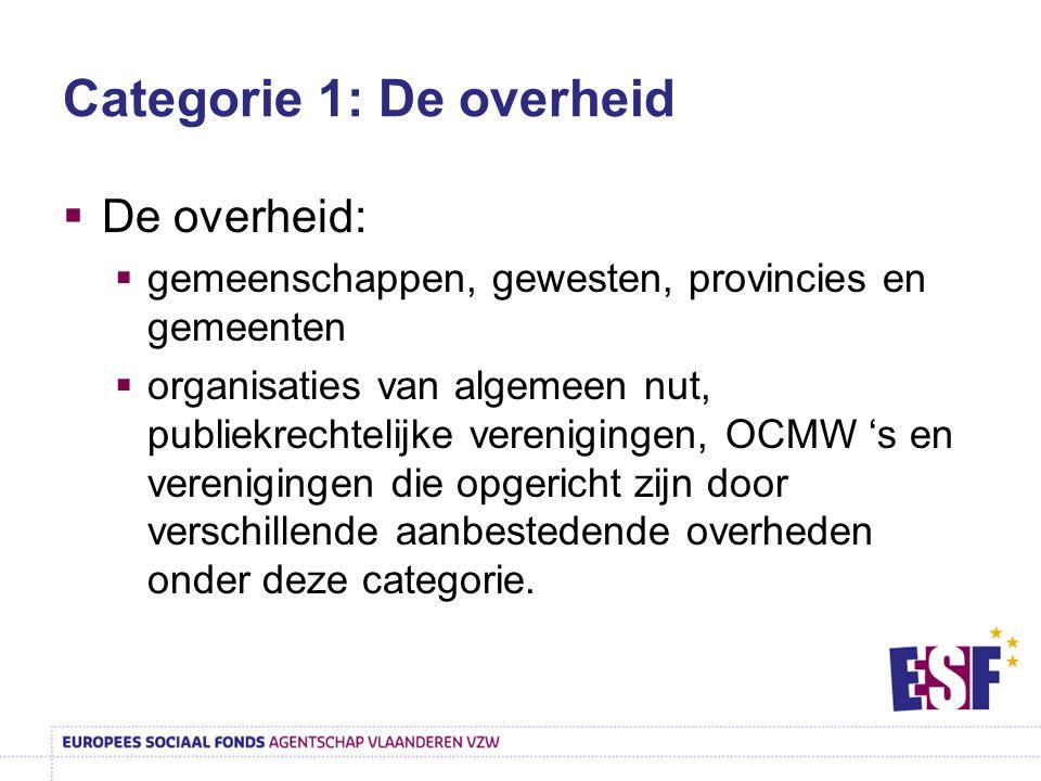 Categorie 1: De overheid  De overheid:  gemeenschappen, gewesten, provincies en gemeenten  organisaties van algemeen nut, publiekrechtelijke vereni