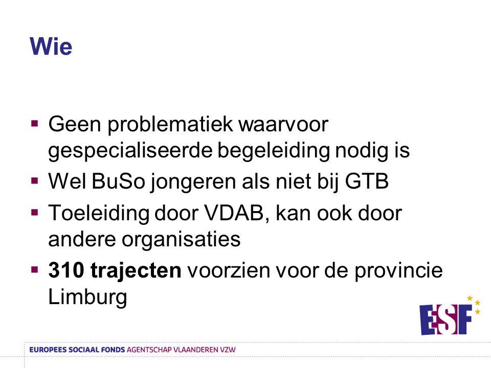 Wie  Geen problematiek waarvoor gespecialiseerde begeleiding nodig is  Wel BuSo jongeren als niet bij GTB  Toeleiding door VDAB, kan ook door ander