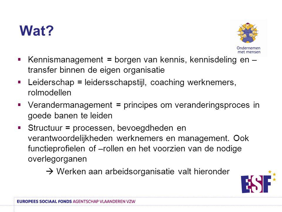  Kennismanagement = borgen van kennis, kennisdeling en – transfer binnen de eigen organisatie  Leiderschap = leidersschapstijl, coaching werknemers,