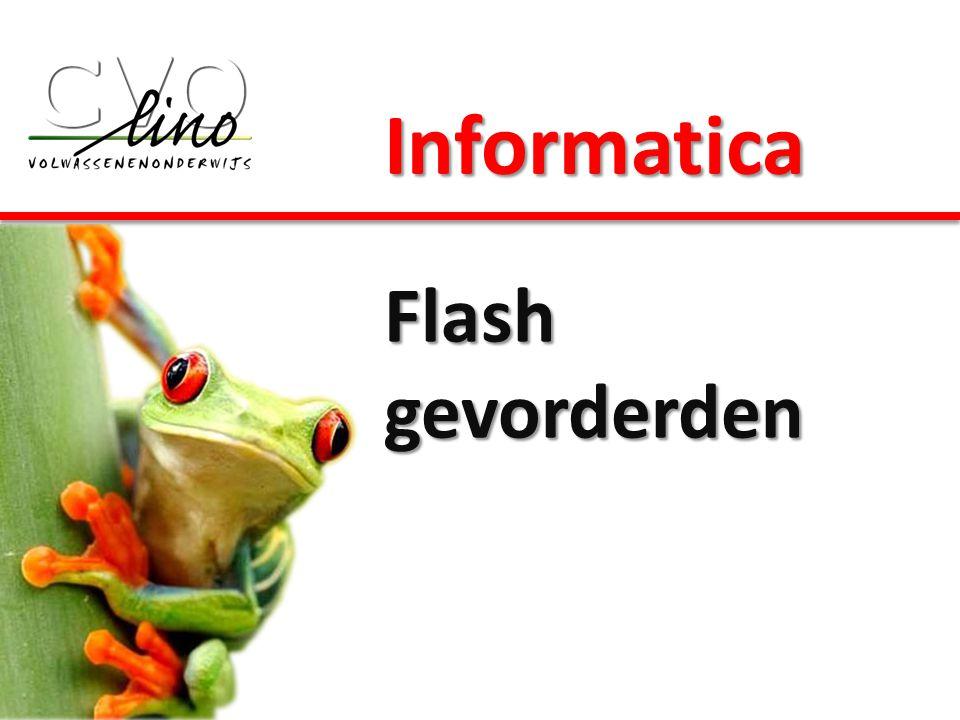 Informatica Flash gevorderden