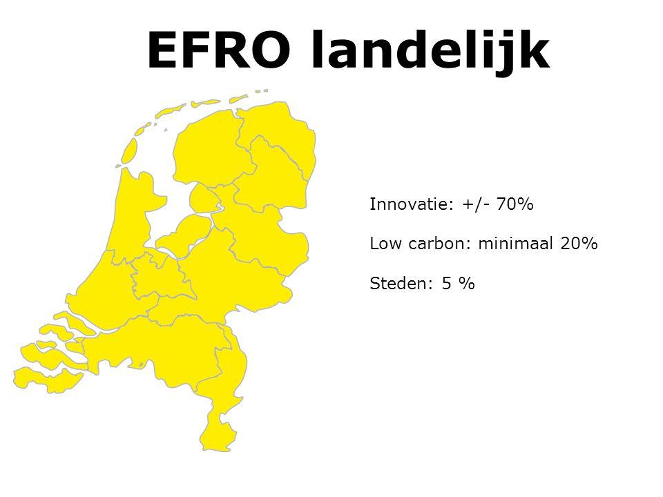 EFRO West Innovatie: kapitaal en valorisatie 55-60% Low Carbon: biobased; duurzame opwekking en energiebesparing bestaande bouw: 20% Steden: Geïntegreerde plannen voor de G4; combinatie economisch EFRO en sociaal ESF gericht op mismatch arbeidsmarkt: 25%