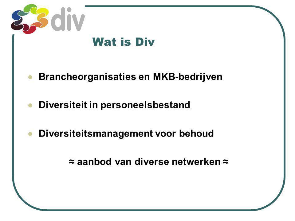 Wat is Div Brancheorganisaties en MKB-bedrijven Diversiteit in personeelsbestand Diversiteitsmanagement voor behoud ≈ aanbod van diverse netwerken ≈