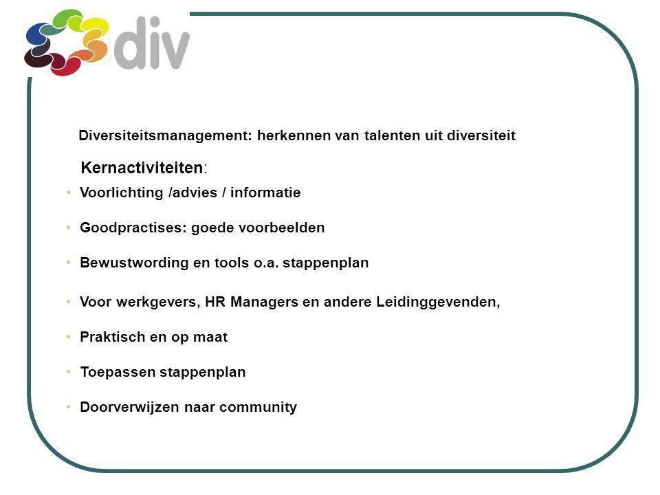 Diversiteitsmanagement: herkennen van talenten uit diversiteit Voor werkgevers, HR Managers en andere Leidinggevenden, Praktisch en op maat Toepassen