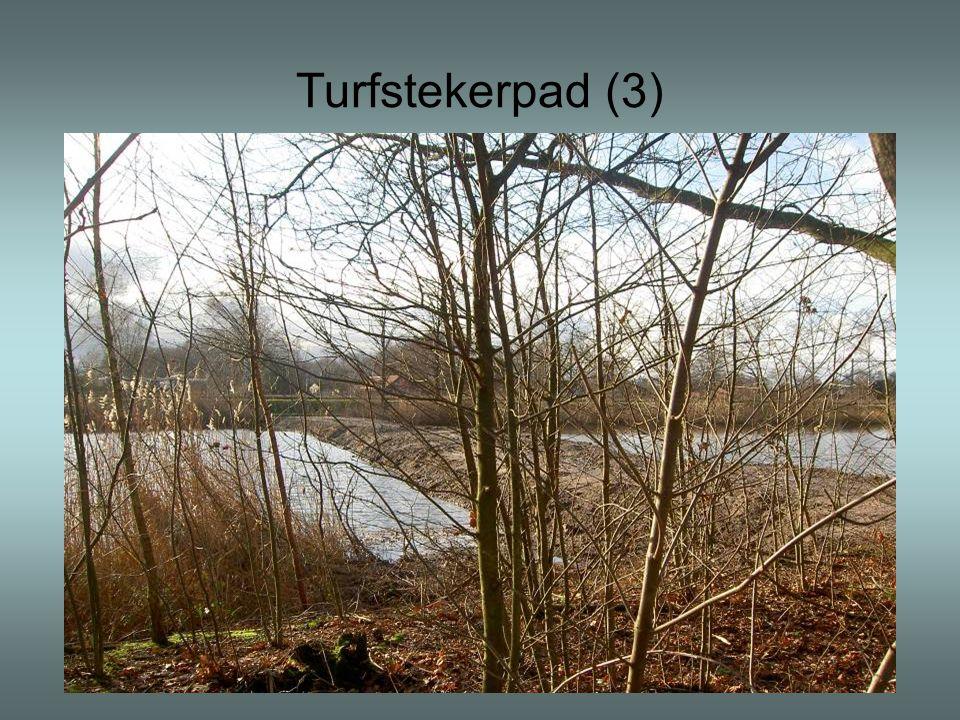 Turfstekerpad (3)