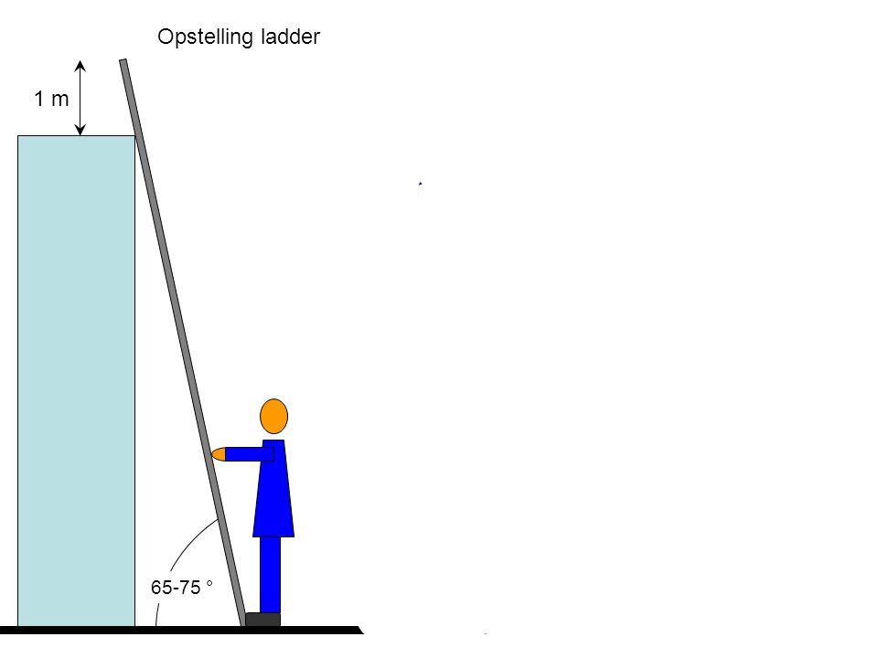Opstelling ladder 65-75 ° 1 m Max. 4-5 sporten van boven !