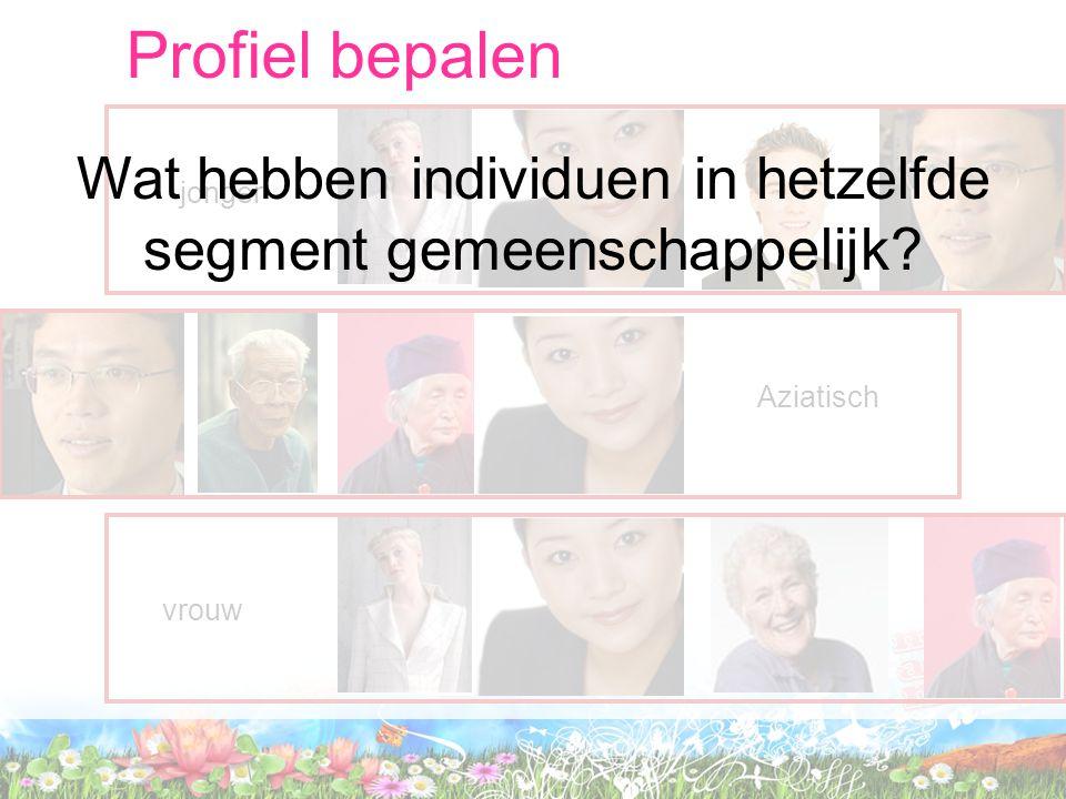 Profiel bepalen jongerAziatisch vrouw Wat hebben individuen in hetzelfde segment gemeenschappelijk?