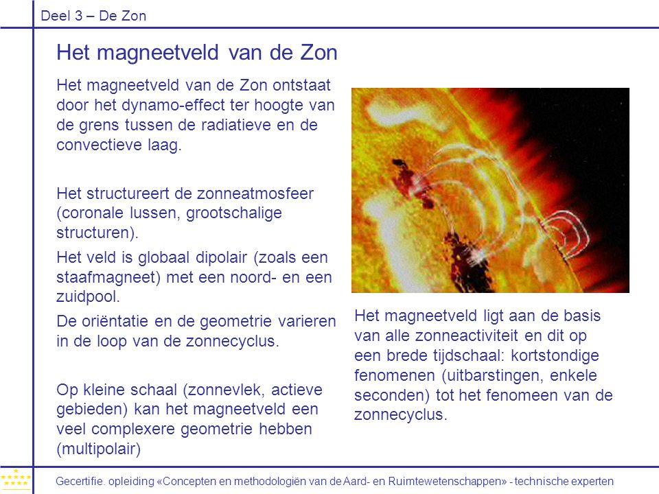 Deel 3 – De Zon Het magneetveld van de Zon Het magneetveld van de Zon ontstaat door het dynamo-effect ter hoogte van de grens tussen de radiatieve en de convectieve laag.
