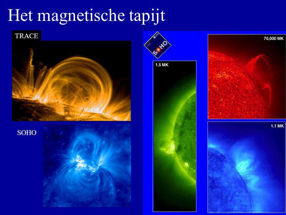 Het magnetische tapijt TRACE SOHO