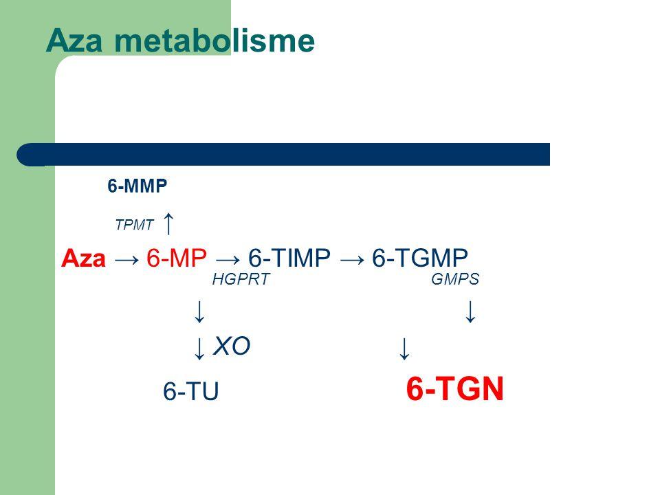 Aza metabolisme 6-MMP TPMT ↑ Aza → 6-MP → 6-TIMP → 6-TGMP HGPRT GMPS ↓ ↓ XO ↓ 6-TU 6-TGN