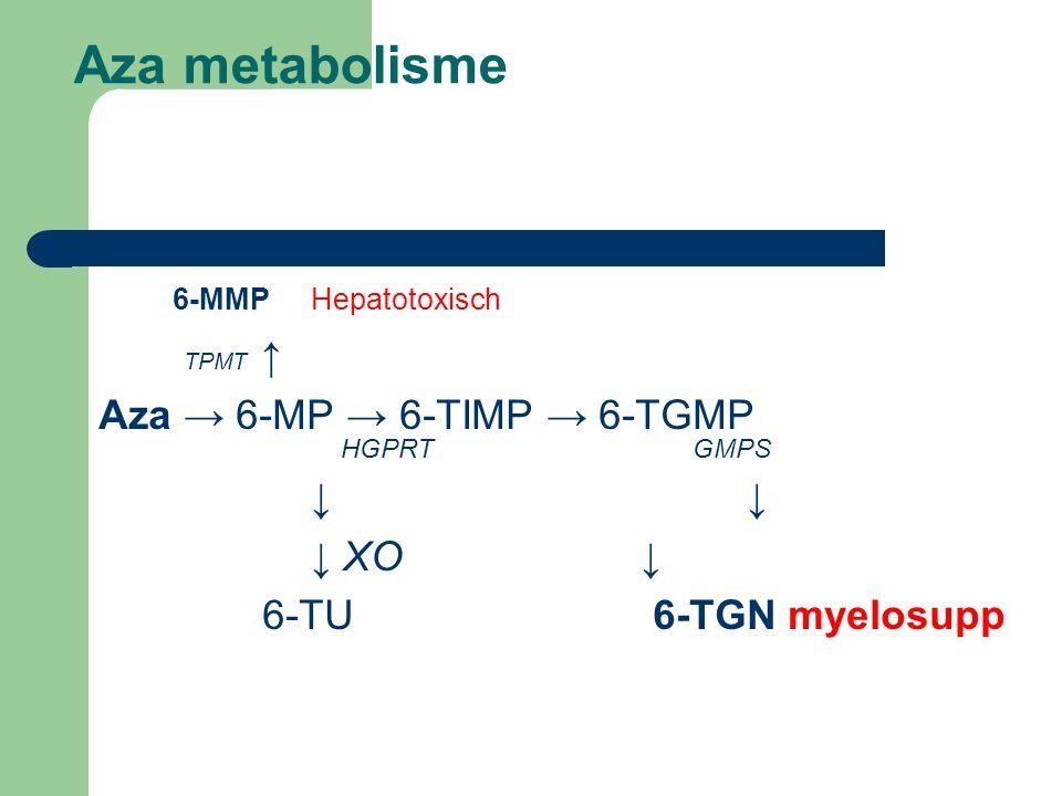 Aza metabolisme 6-MMPHepatotoxisch TPMT ↑ Aza → 6-MP → 6-TIMP → 6-TGMP HGPRT GMPS ↓ ↓ XO ↓ 6-TU 6-TGN myelosupp