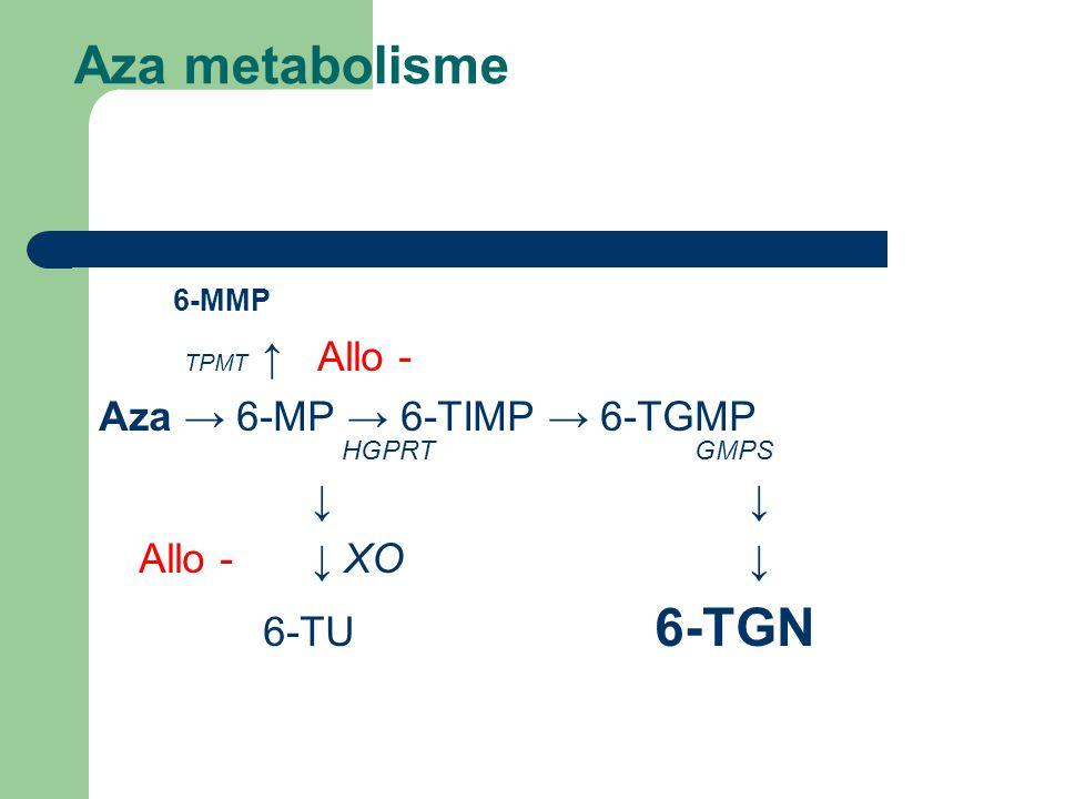 Aza metabolisme 6-MMP TPMT ↑ Allo - Aza → 6-MP → 6-TIMP → 6-TGMP HGPRT GMPS ↓ Allo -↓ XO ↓ 6-TU 6-TGN