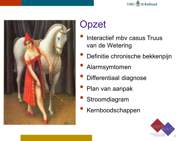 Opzet Interactief mbv casus Truus van de Wetering Definitie chronische bekkenpijn Alarmsymtomen Differentiaal diagnose Plan van aanpak Stroomdiagram K