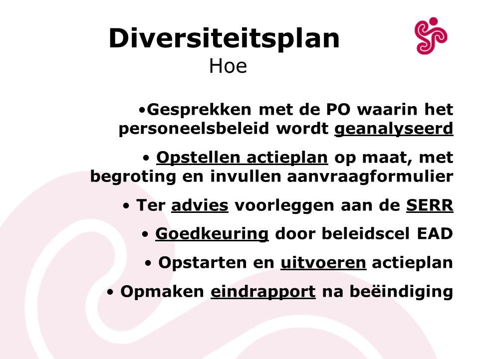 Diversiteitsplan Hoe Gesprekken met de PO waarin het personeelsbeleid wordt geanalyseerd Opstellen actieplan op maat, met begroting en invullen aanvra