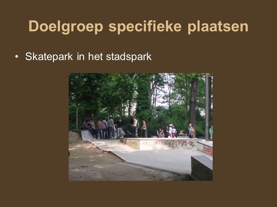 Skatepark in het stadspark Doelgroep specifieke plaatsen