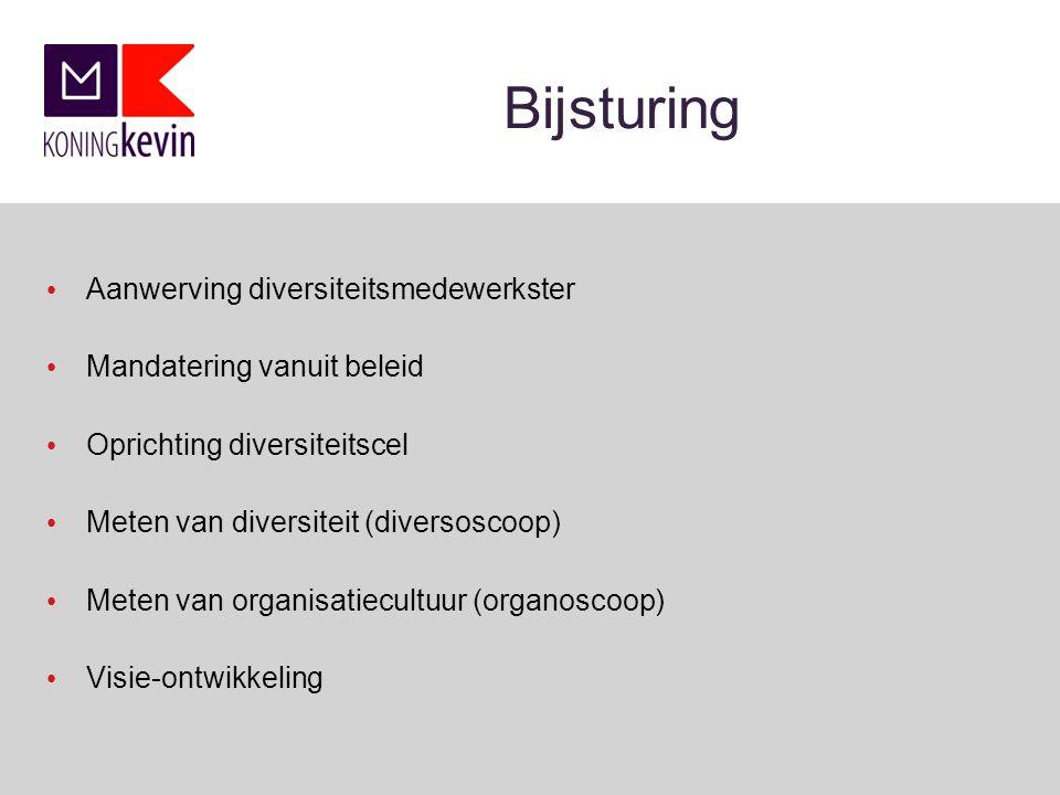 Bijsturing Aanwerving diversiteitsmedewerkster Mandatering vanuit beleid Oprichting diversiteitscel Meten van diversiteit (diversoscoop) Meten van organisatiecultuur (organoscoop) Visie-ontwikkeling