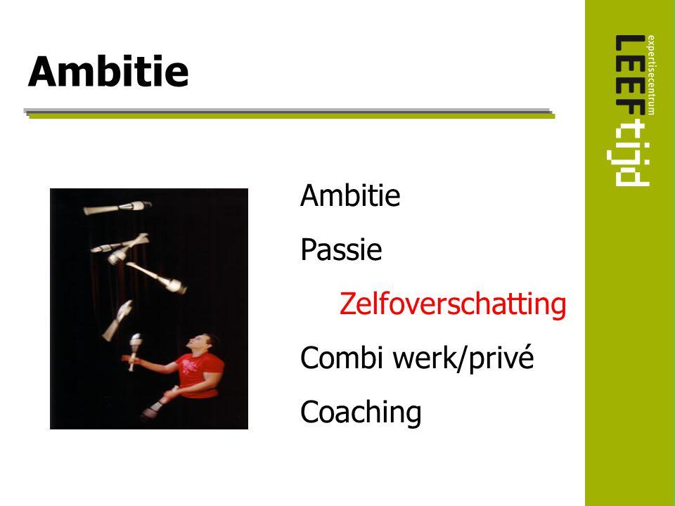 Ambitie Passie Zelfoverschatting Combi werk/privé Coaching