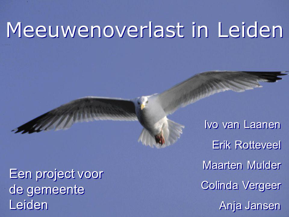 Meeuwenoverlast in Leiden Ivo van Laanen Erik Rotteveel Maarten Mulder Colinda Vergeer Anja Jansen Ivo van Laanen Erik Rotteveel Maarten Mulder Colind