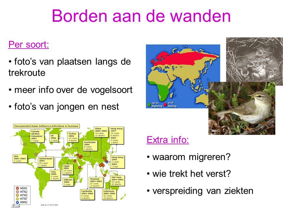 Per soort: foto's van plaatsen langs de trekroute meer info over de vogelsoort foto's van jongen en nest Extra info: waarom migreren? wie trekt het ve
