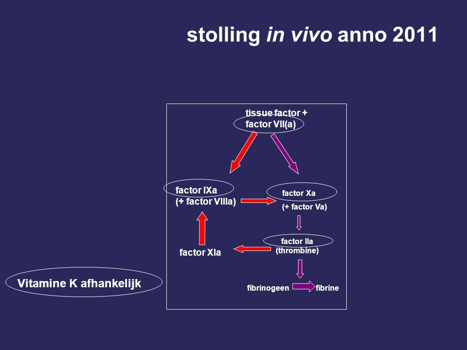 stolling in vivo anno 2011 Vitamine K afhankelijk factor IIa (thrombine) fibrinogeen fibrine factor Xa (+ factor Va) tissue factor + factor VII(a) fac