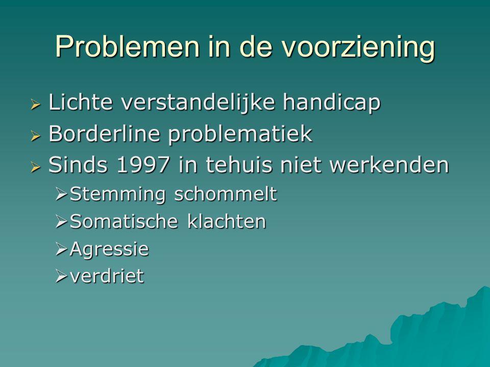 Problemen in de voorziening  Lichte verstandelijke handicap  Borderline problematiek  Sinds 1997 in tehuis niet werkenden  Stemming schommelt  Somatische klachten  Agressie  verdriet