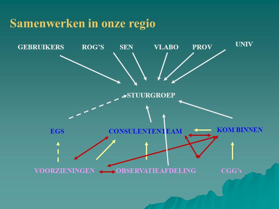 ROG'SVLABOPROV UNIV SENGEBRUIKERS STUURGROEP KOM BINNEN CONSULENTENTEAMEGS VOORZIENINGENOBSERVATIEAFDELINGCGG's Samenwerken in onze regio