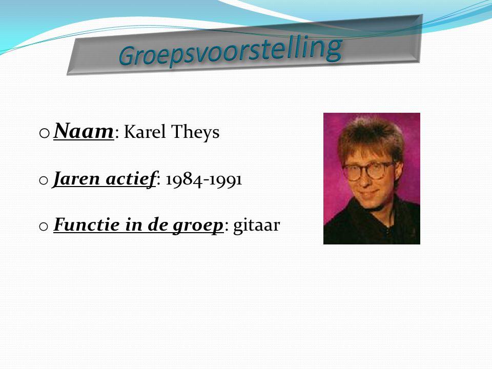 o Naam : Karel Theys o Jaren actief: 1984-1991 o Functie in de groep: gitaar