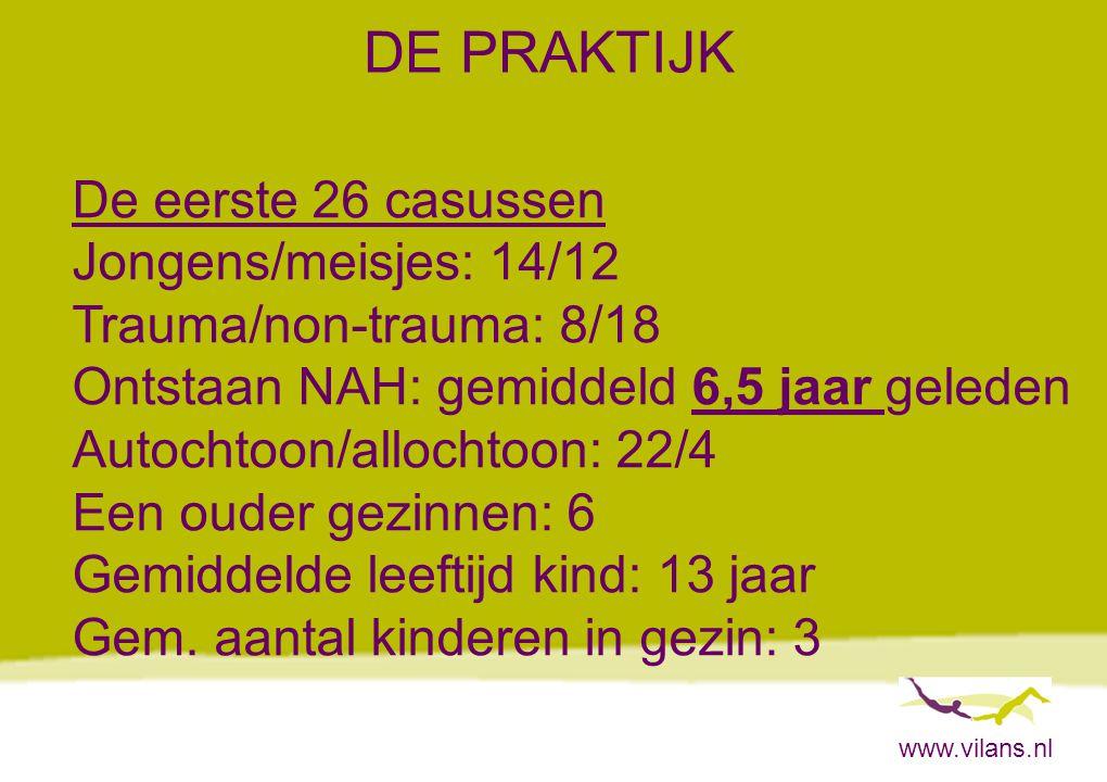 www.vilans.nl DE PRAKTIJK De eerste 26 casussen Jongens/meisjes: 14/12 Trauma/non-trauma: 8/18 Ontstaan NAH: gemiddeld 6,5 jaar geleden Autochtoon/all