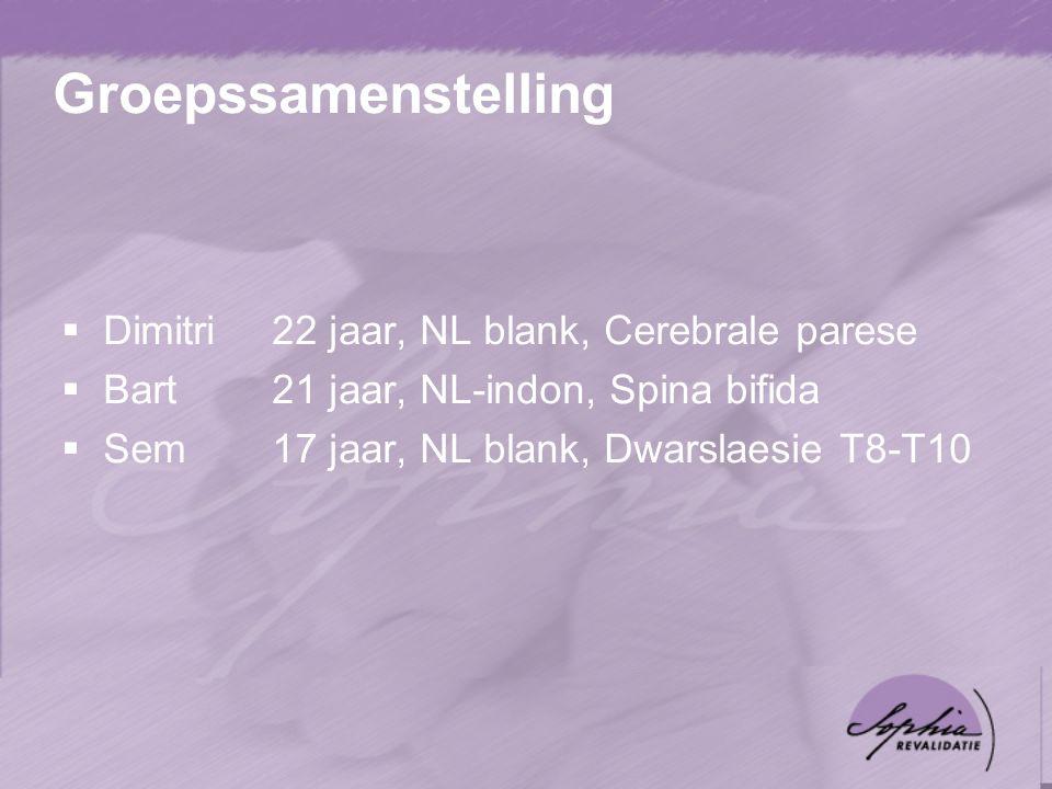 Groepssamenstelling  Dimitri22 jaar, NL blank, Cerebrale parese  Bart21 jaar, NL-indon, Spina bifida  Sem17 jaar, NL blank, Dwarslaesie T8-T10