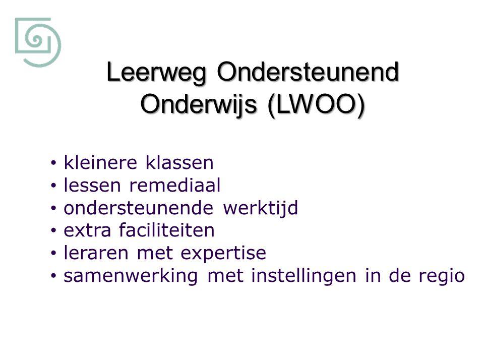 Leerweg Ondersteunend Onderwijs (LWOO) kleinere klassen lessen remediaal ondersteunende werktijd extra faciliteiten leraren met expertise samenwerking met instellingen in de regio