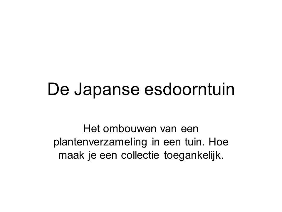 De Japanse esdoorntuin is in eerste instantie een plantenverzameling.