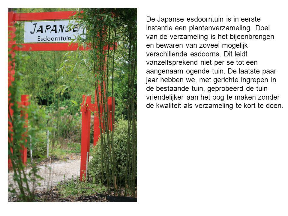De Japanse esdoorntuin is in eerste instantie een plantenverzameling. Doel van de verzameling is het bijeenbrengen en bewaren van zoveel mogelijk vers