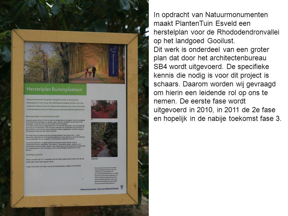 In opdracht van Natuurmonumenten maakt PlantenTuin Esveld een herstelplan voor de Rhododendronvallei op het landgoed Gooilust. Dit werk is onderdeel v