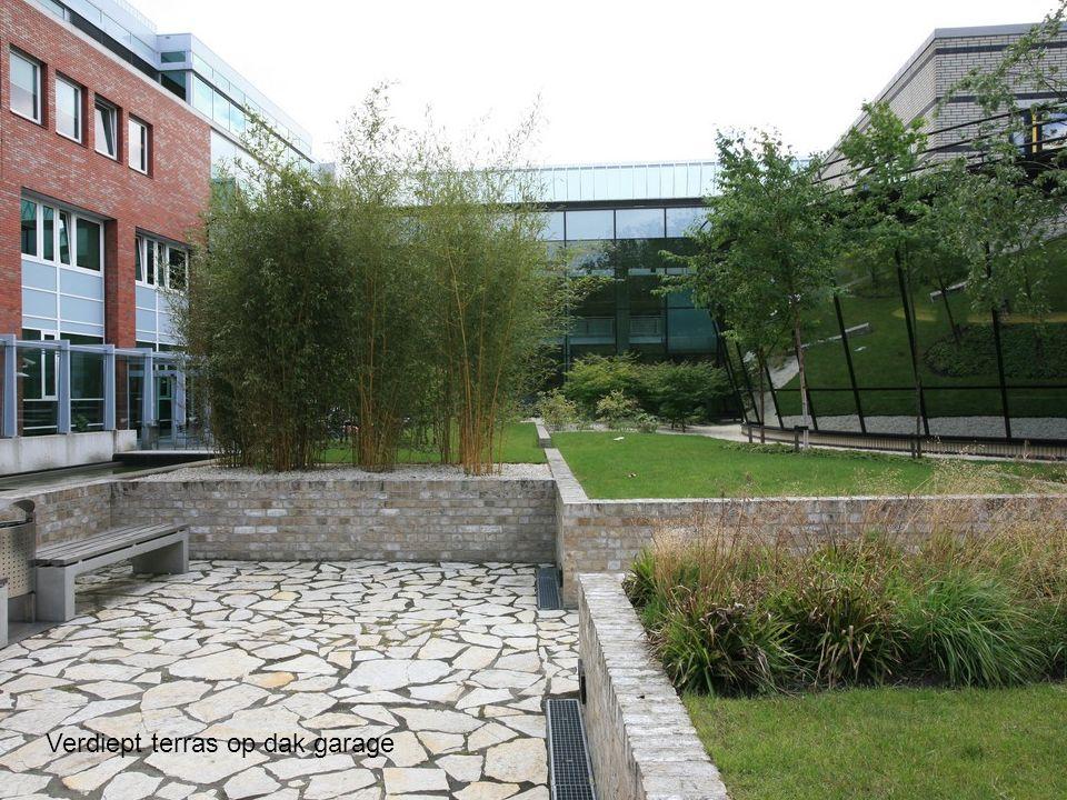 Het beplantingsplan is gerealiseerd door PlantenTuin Esveld en draait om bamboes en grassen in combinatie met berken en Japanse esdoorns.