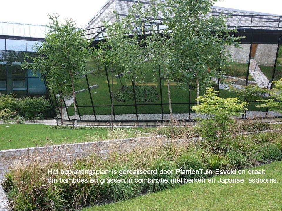 De tuin moet veel functies verenigen maar probeert dit op een niet nadrukkelijke manier te doen.